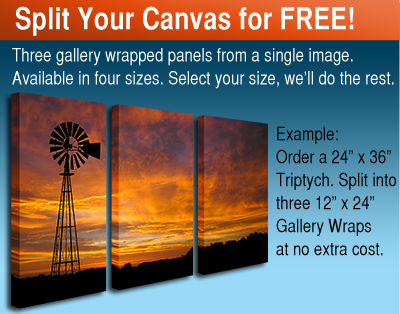 Three Piece Canvas Photo Splits. A powerful and contemporary way to display your photos.